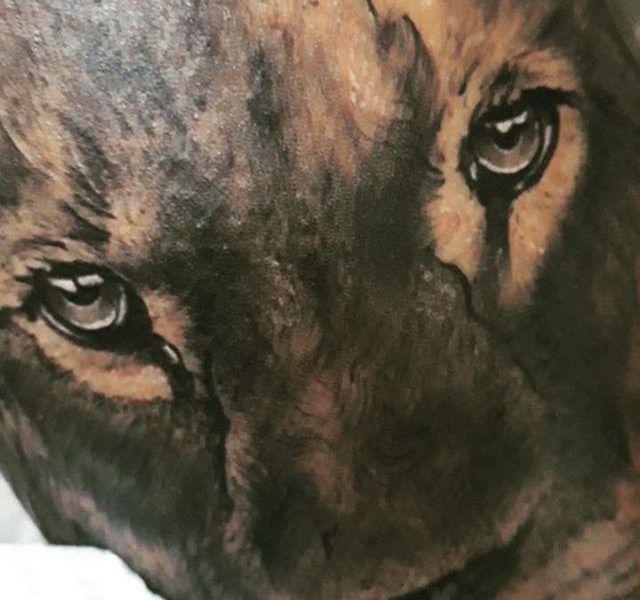 tatuaje leon realismo