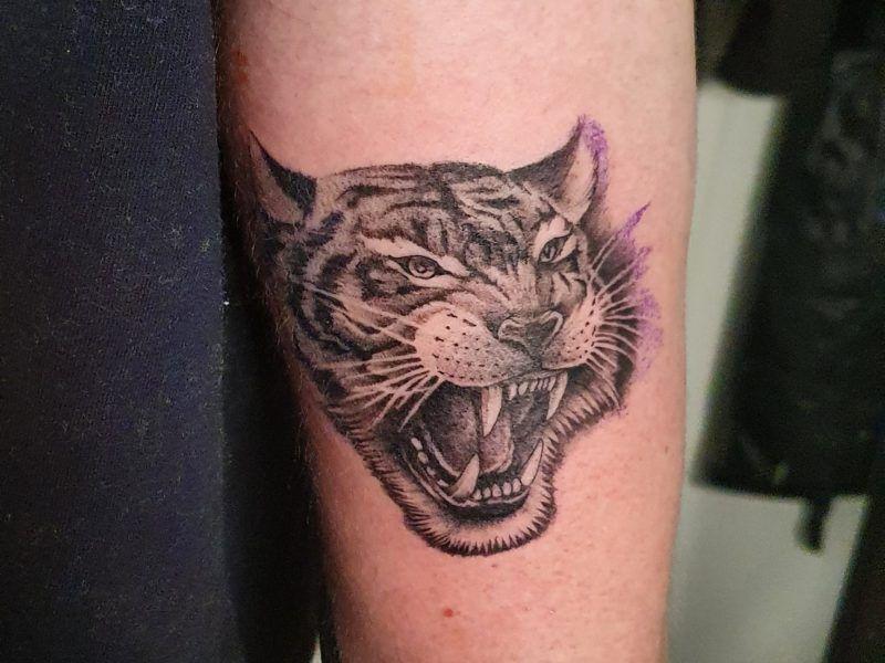 Tigre microrealismo