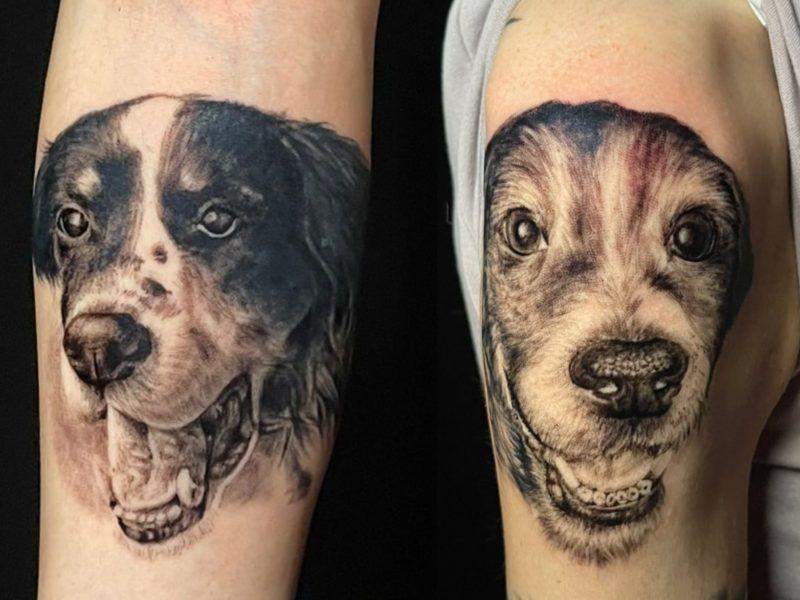 retratos de perro realismo