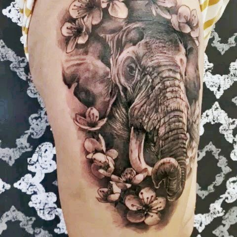elefante realismo tattoo